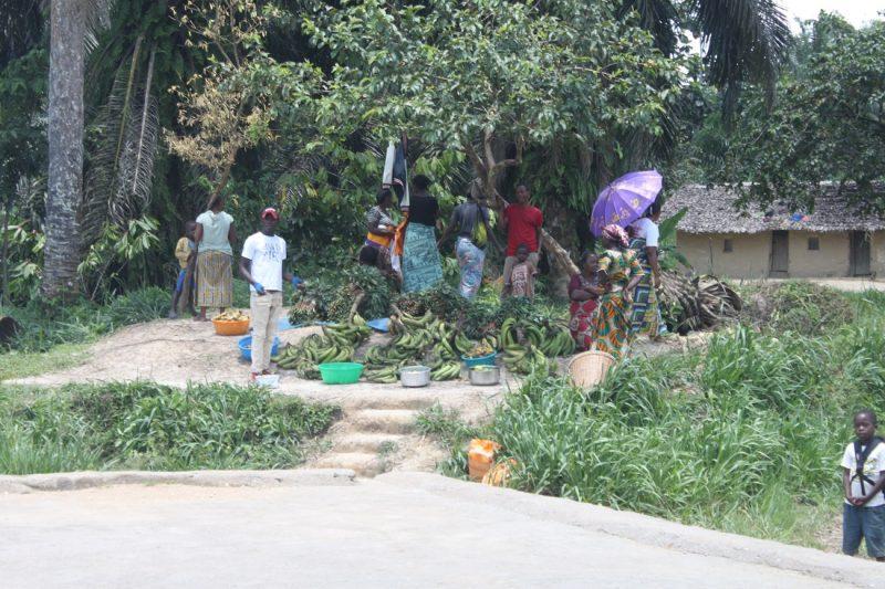 The people in the Kivu region