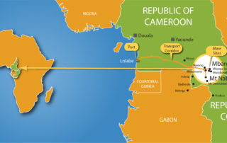 Stakeholders discuss Cameroon iron ore project