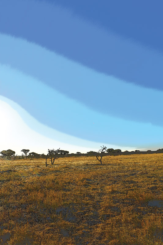 The environment is top priority for Canadian-listed B2Gold's Otjikoto mine in Namibia. Photo by ©Leon Louw